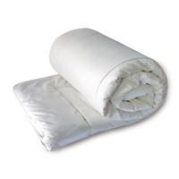 Одеяло ЕВРО (195х215) легкое (200 гр/м2) , лебяжий пух, микрофибра