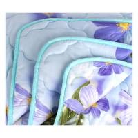 Одеяло ЕВРО (195х215) легкое (200 гр/м2) , лебяжий пух