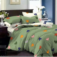 Постельное белье поплин 2 спальное - K-1051