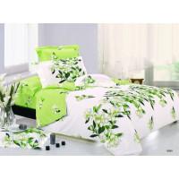 Постельное белье поплин 2 спальное - K-10999