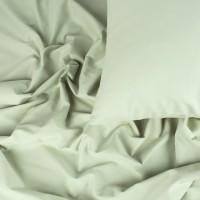 Постельное белье сатин 2 спальное Аспарагус